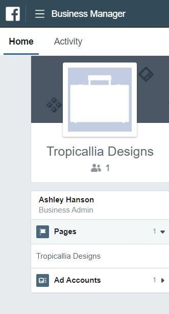 Manage pages via FB Business Manager